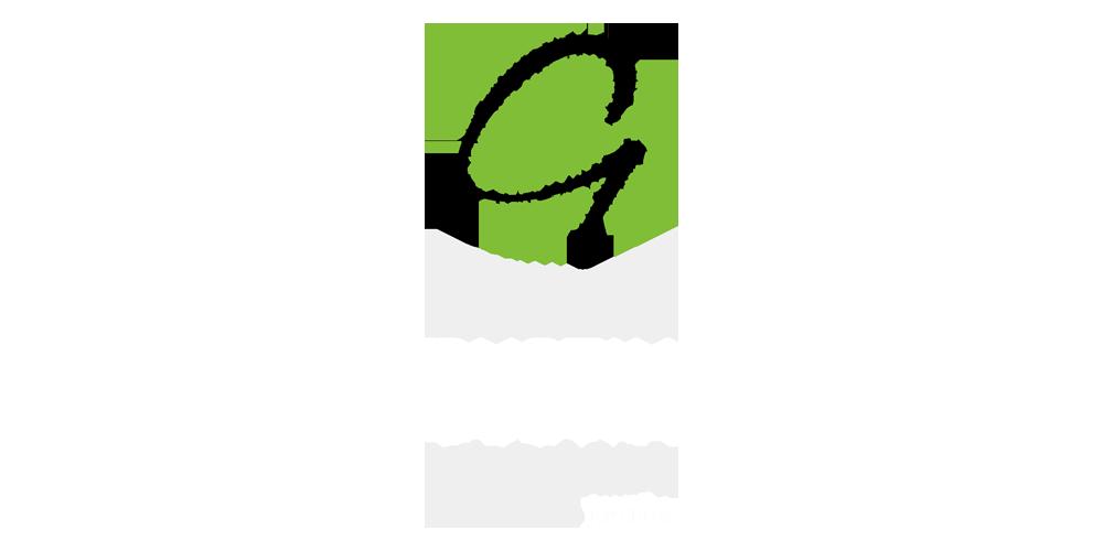 AP Gustin